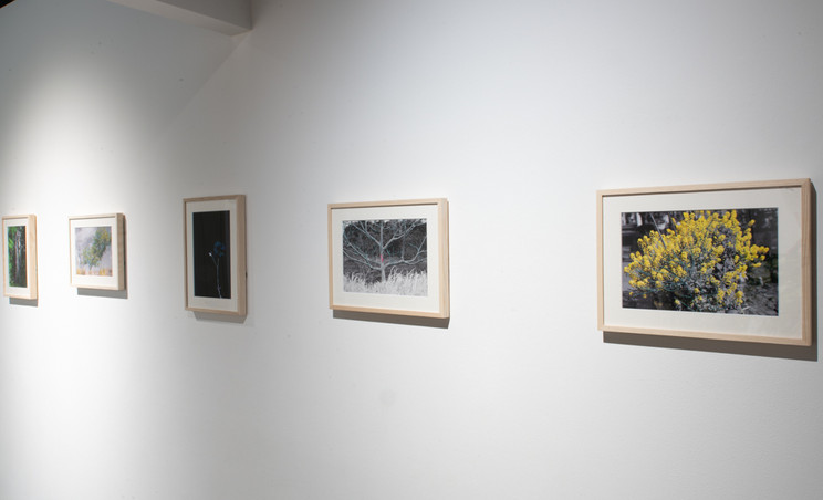 """""""clerestory"""" Exhibition view #9"""
