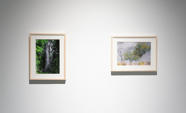 """""""clerestory"""" Exhibition view #11"""