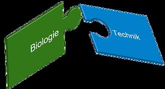 startlearnING verbindet Biologie & Technik
