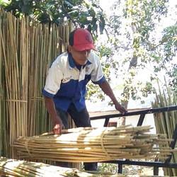 bamboo_material