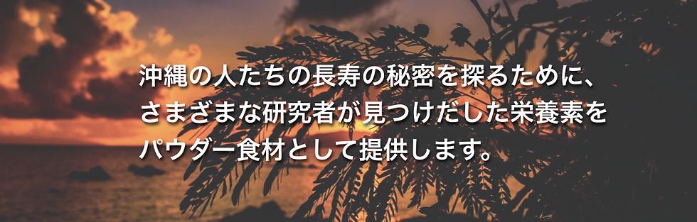okinawakara2.png