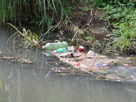 Quem salvará o Rio das Mortes da morte?