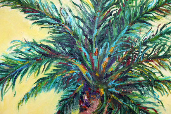 Palm Close Up 5