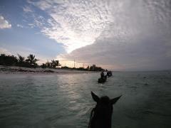 Ride N Swim Sunset tour