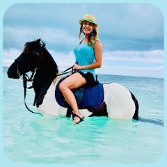 We come to you Horseback riding
