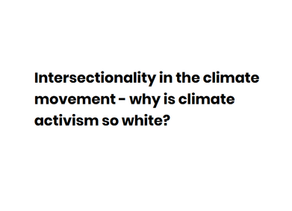 Intersectionality in the climate movement - why is climate activism so white?