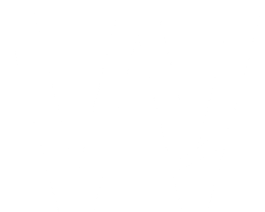 w white transparents logo.png