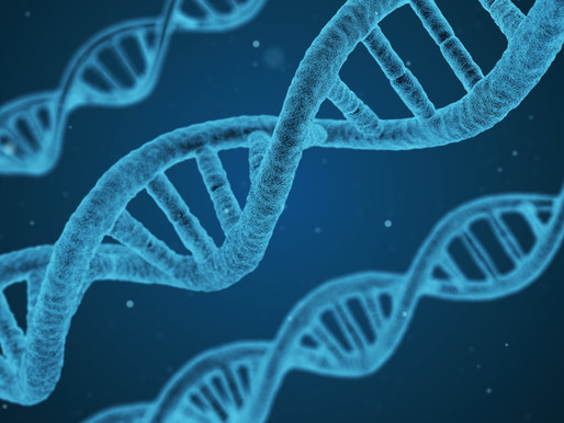 Democratizing Antibodies
