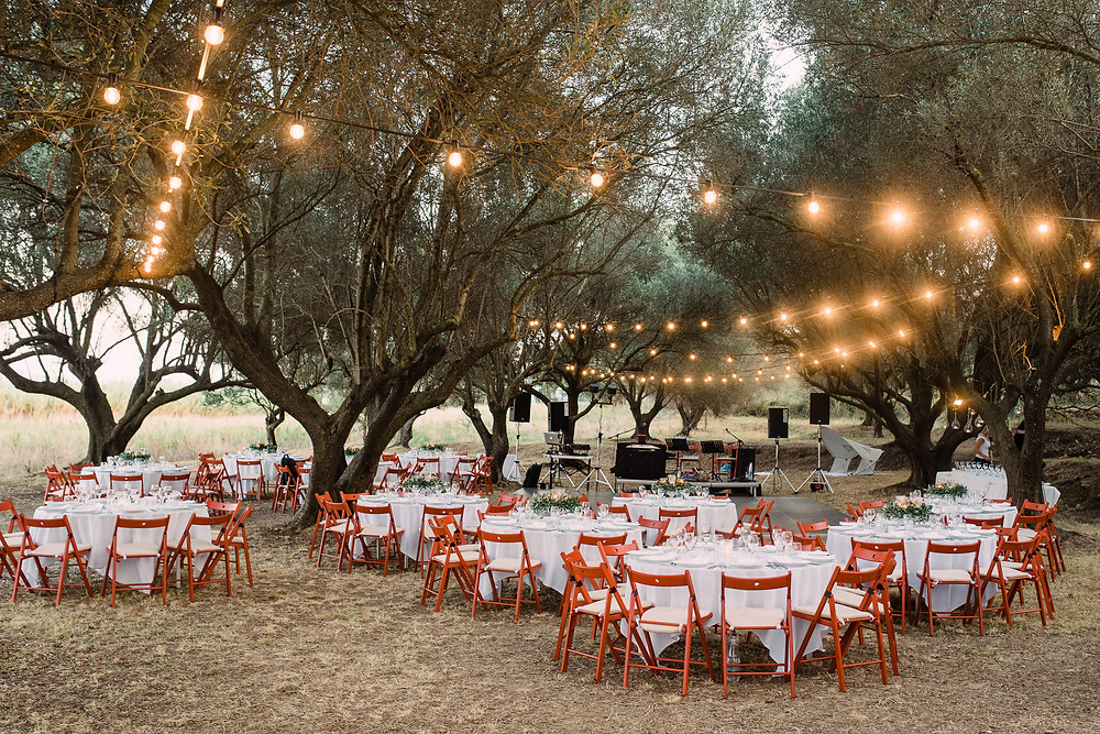 Olive Grove reception