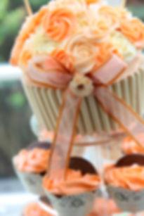 outdoor wedding with celebrant