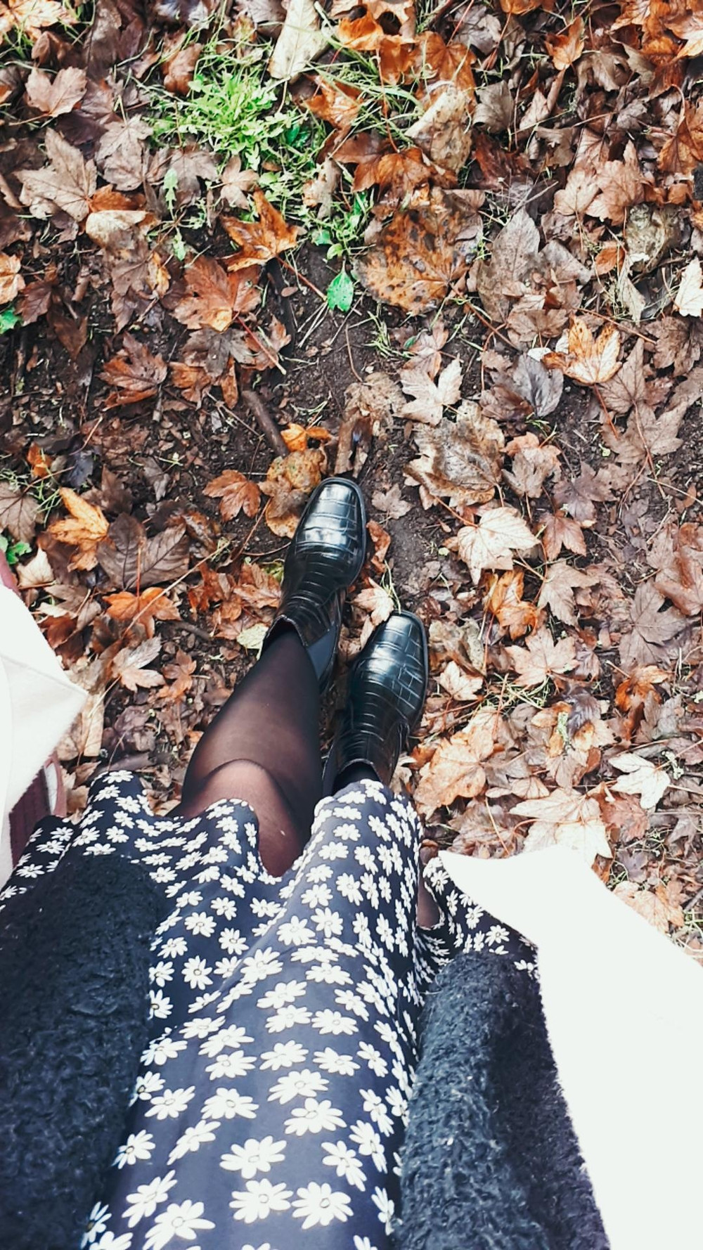 Autumn vibes everywhere