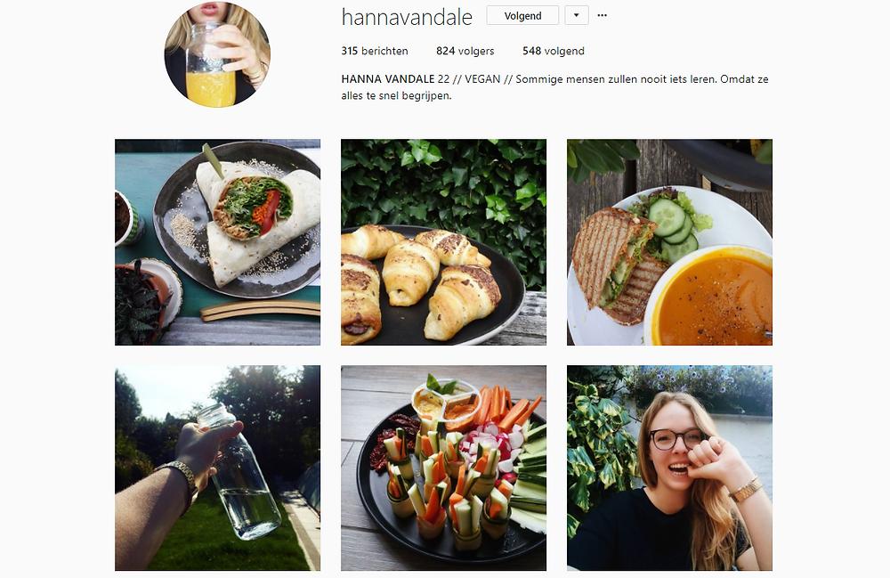 Instagrampagina Hanna Vandale