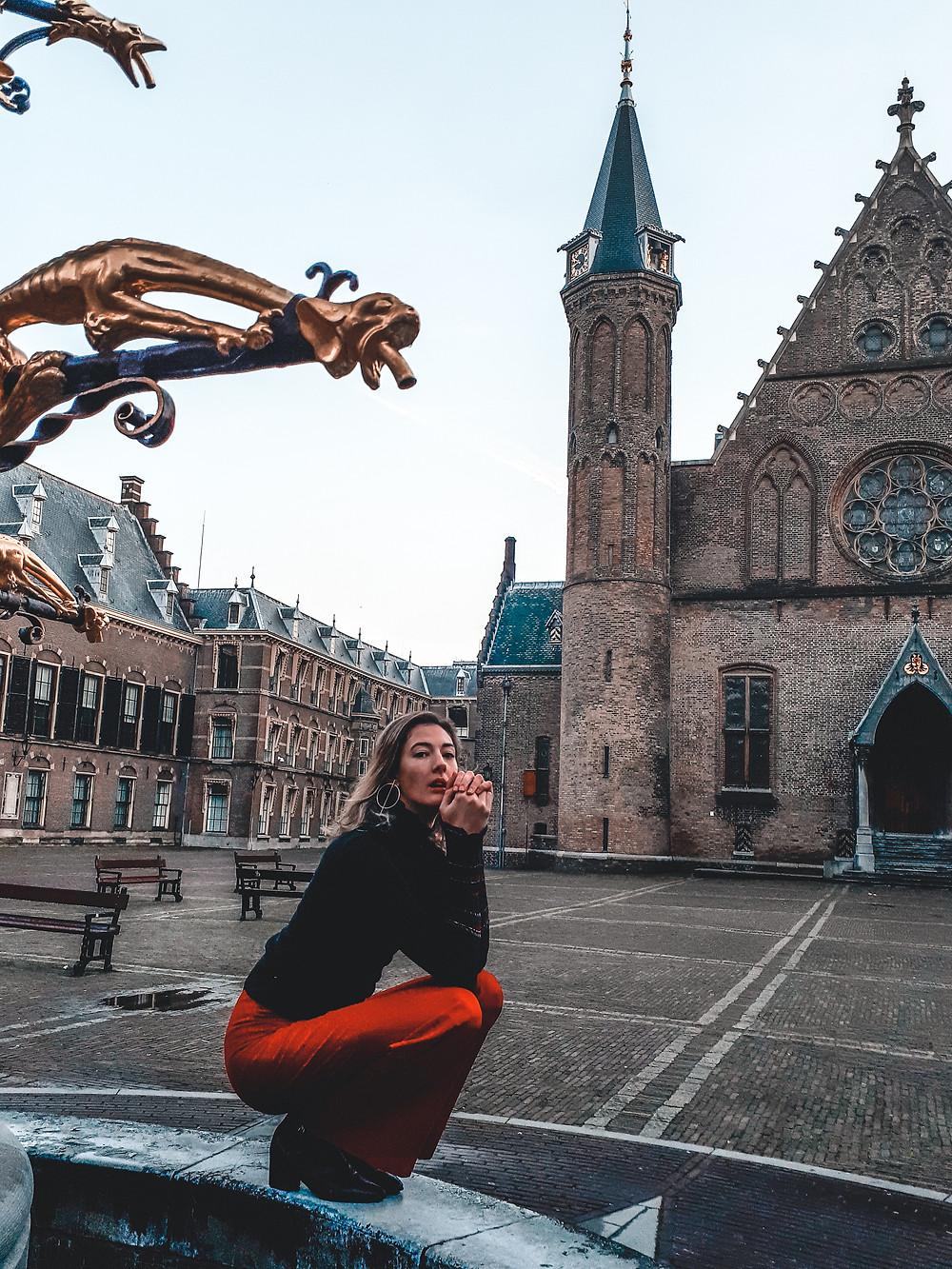 Binnenhof Inner Court The Hague