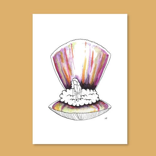 Dreamy shell