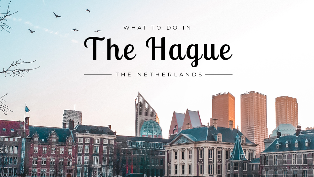 Header 'What to do in The Hague'