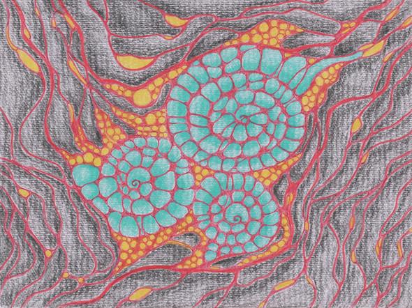 Supernova | Colorpencil