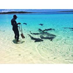 Exuma Island