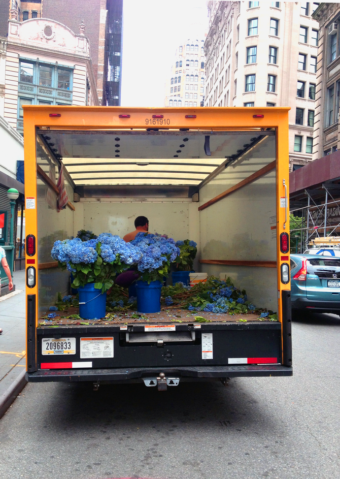 A moment in New York's flower district . . .
