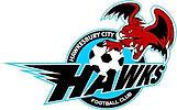 HAWKSfootball_1_Logo.jpeg