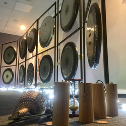 Julias gongs
