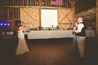 dj speed of sound wedding dj near me ohio