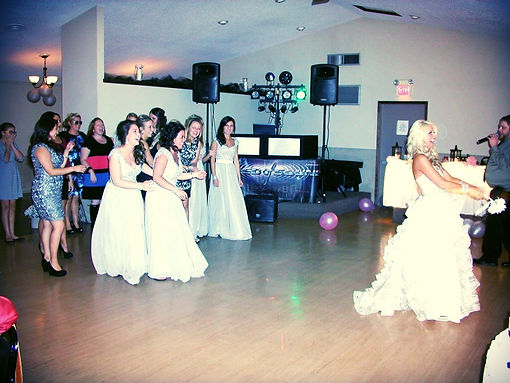 wedding dj ohio wedding dj dj wedding dj speed of sound ohio wedding dj
