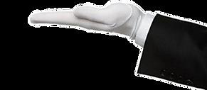White Glove Delivery Service - Telsa, Ford, Porsche, BMW, Mercedes, Honda