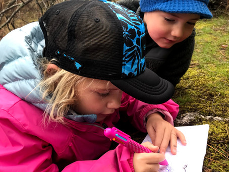 Are Nature Journals right for preschoolers?