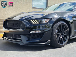Ford Mustang Paint Correction