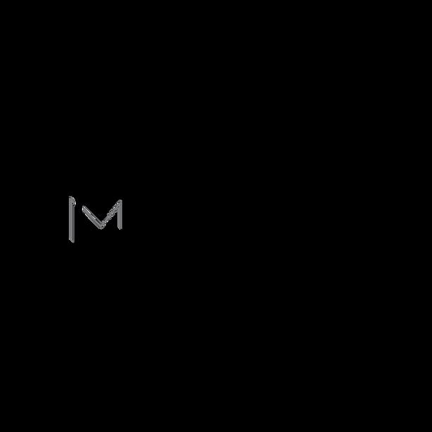 Logo PortfolioD2.png