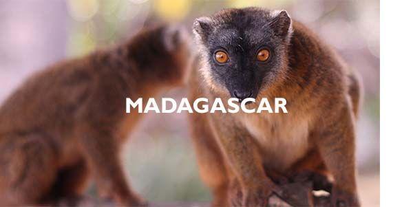 Agence de voyages Madagascar