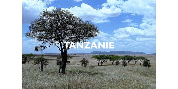 Agence de voyages Tanzanie
