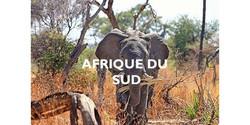 Agence de voyages afrique du sud