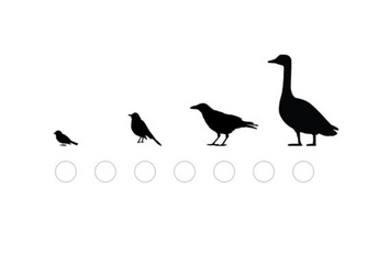 Review: Merlin Bird ID