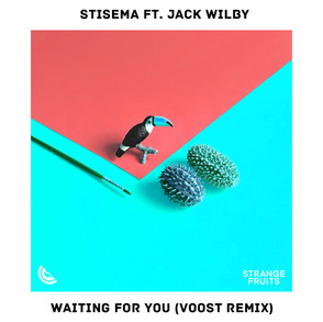Waiting For You (Voost Remix)