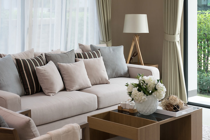 modern living room design with sofa and