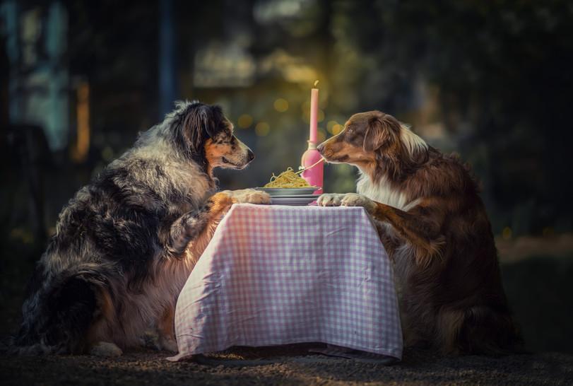 Diner for Two.jpg