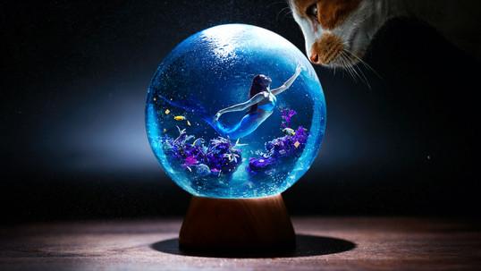 mermaid_in_a_snowball.jpg