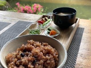 長岡式酵素玄米お持ち帰り始めます。
