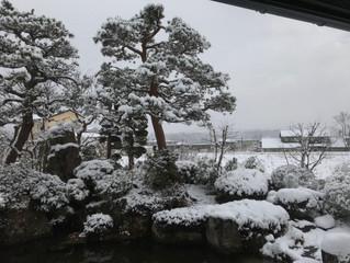 雪、積もりました!