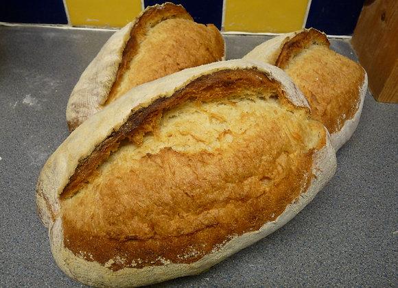 ~ Batard ~    Oval White Loaf