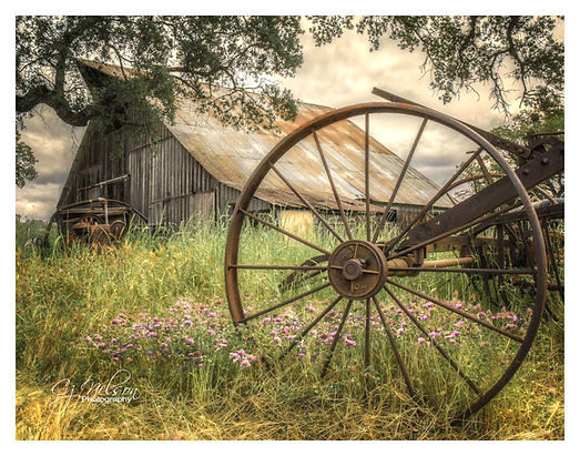 Old barn, wagon wheel, cloverpatch, fields, rural country, hay rake.