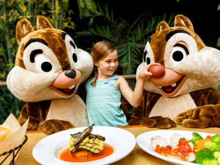 You've booked your trip to Walt Disney World… now what?