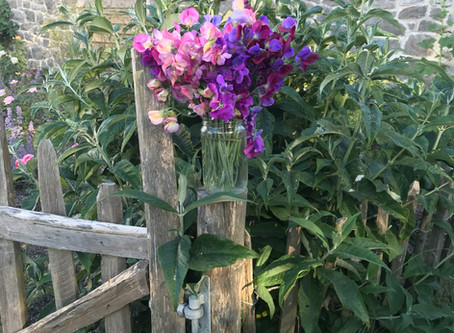 1st June 2020, Sweet peas and roses