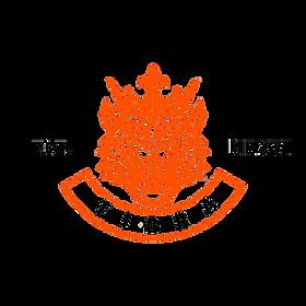 TIG2020 v2.0.png