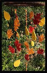 Autumn leaves mobile, wool felt by Sharon Jong, artist of Edmonton Alberta