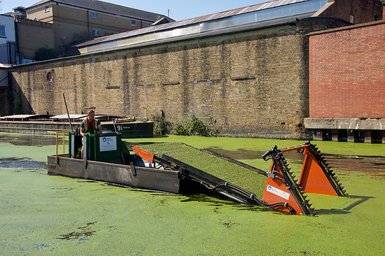 Canal Reed & Weed Management