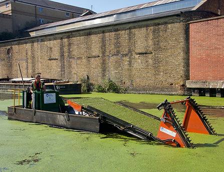 weed cutting boat