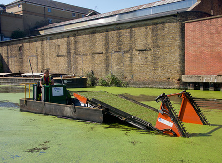 Canal Maintenance and Aquatic Weed Control UK