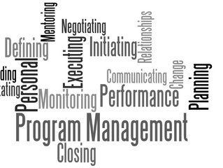 A Complete Guide to Effective Program Management